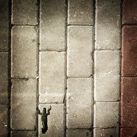 http://www.alitaptik.com/files/gimgs/4_taptikkazavekader37.jpg